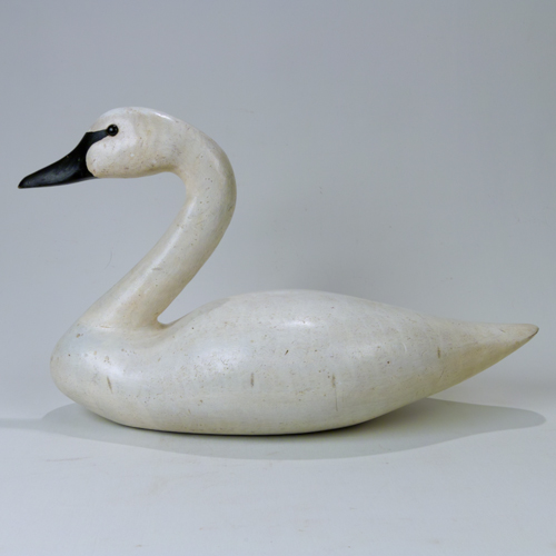 swan side view